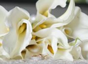 saratogaEvent_Floral_img (1)