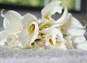 bride_bouquet_img3